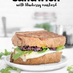 turkey and brie sandwich with blueberry mustard and arugula with text overlay