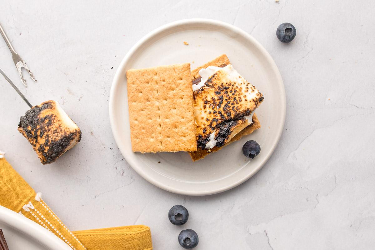 marshmallow s'more on a plate with blueberries around it