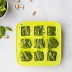 pistachio pesto sauce in ice tray with ingredients surrounding it