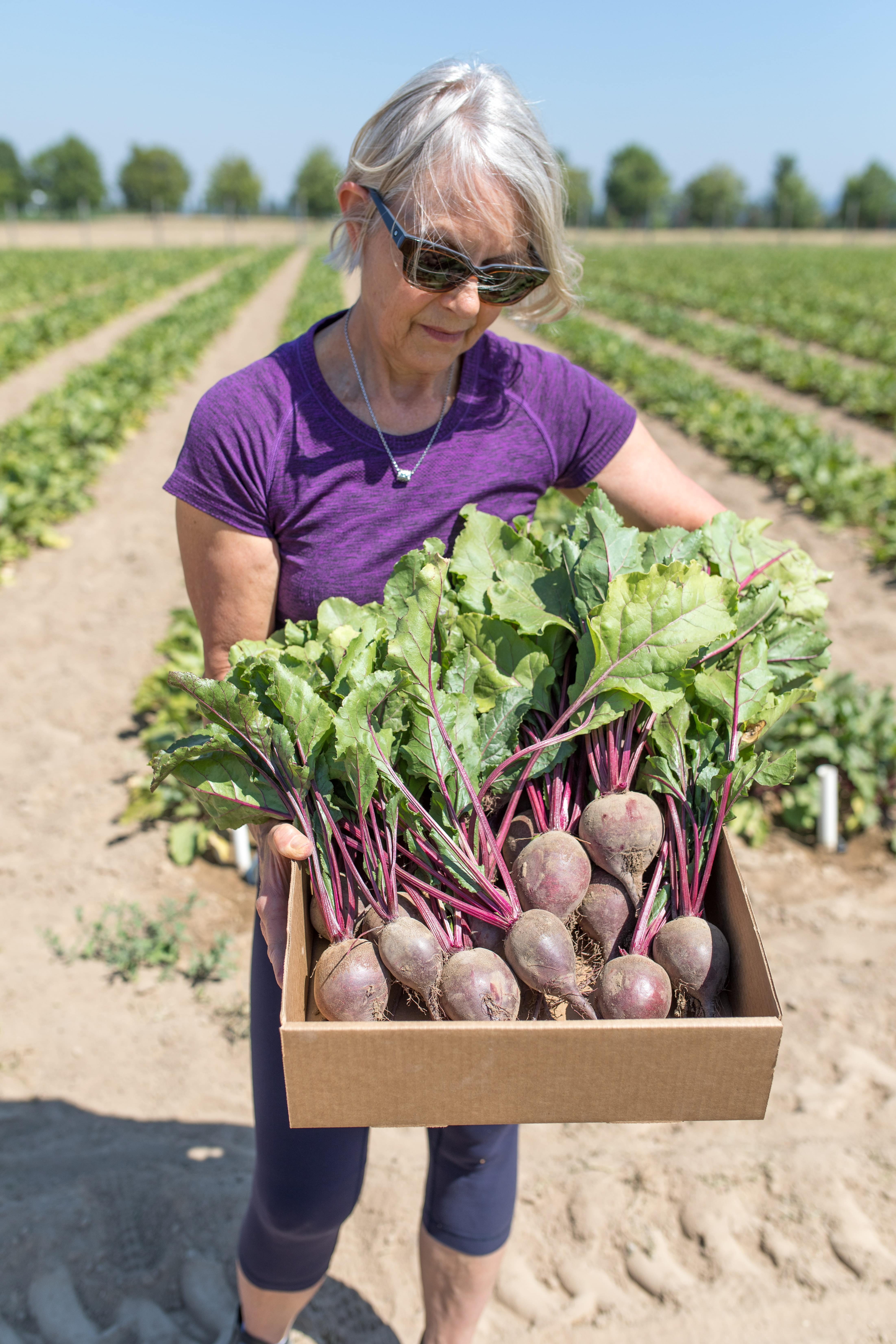 woman holding box of beets at a farm