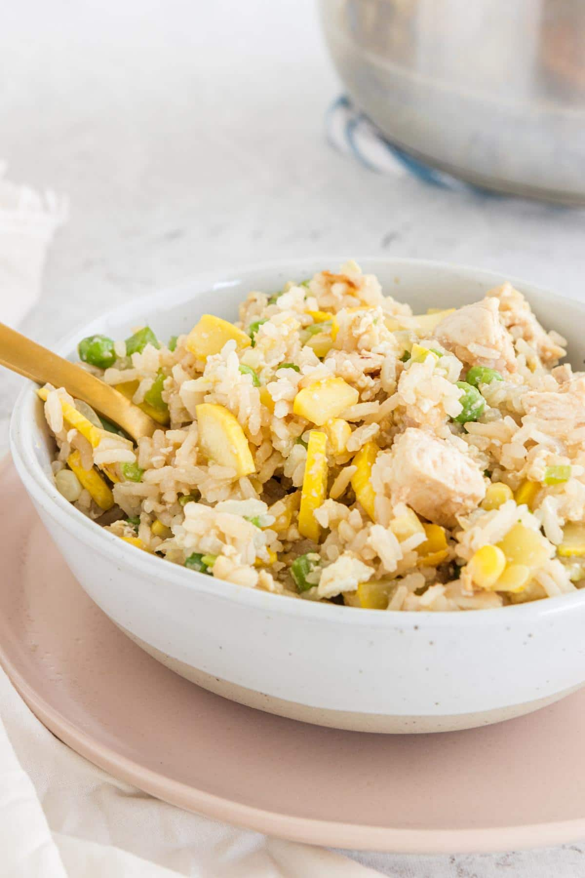 close up of a bowl of chicken fried rice